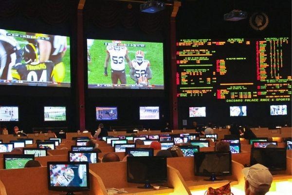 Arizona prepares sports betting launch for September